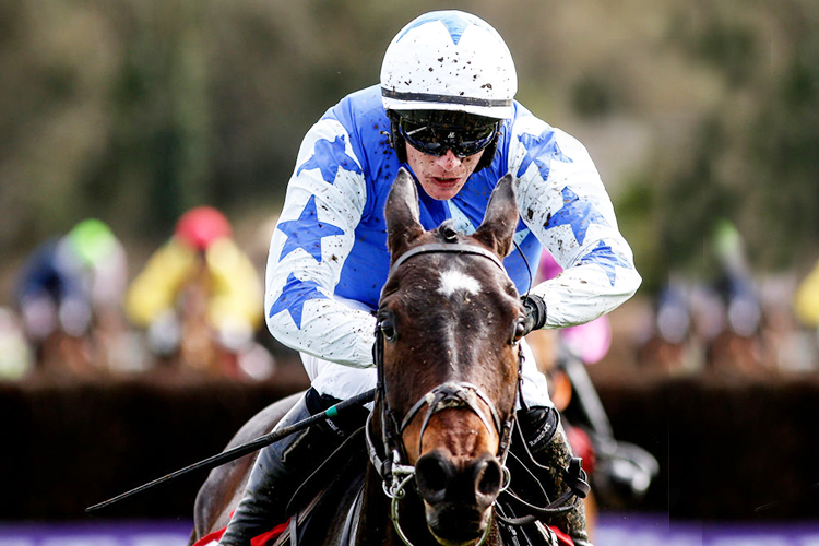 Gold Cup Favourite Suspended From Racing