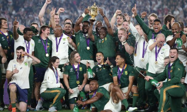 Rugby World Cup 2019 By The Numbers