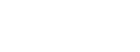 Sport for Business