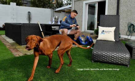 Hurling From Home on Social Media