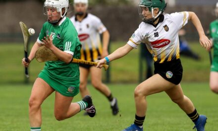 Ten 'Second' Teams Removed from Camogie Championship