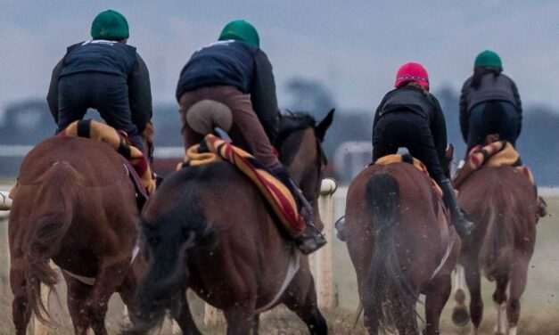 Shaping the Experience of Racehorse Ownership
