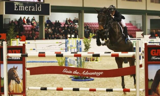 Show Jumping Returns to Screens on RTÉ