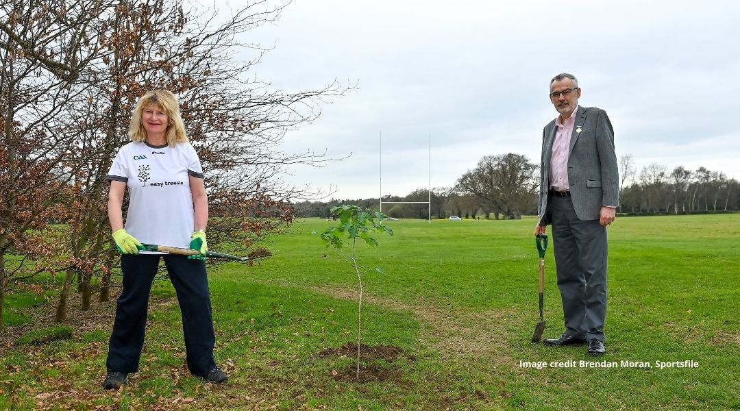 'Easy Treesie' for the GAA's Green Clubs