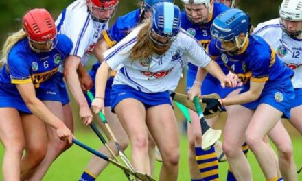 Camogie Boost for Lower Levels