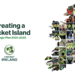Launching Cricket Ireland's New Strategic Plan