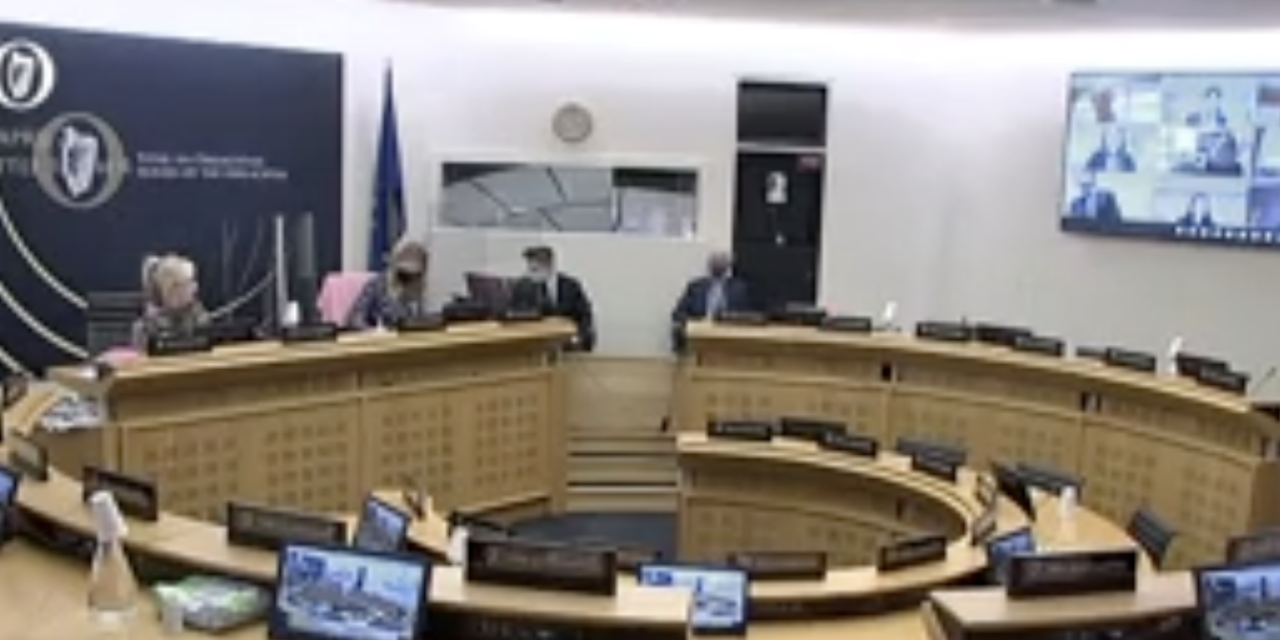 Government Committee Pressed on Women's Equality