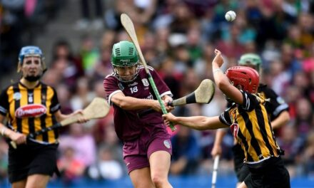 Camogie Votes for Alignment but Fault Lines visible