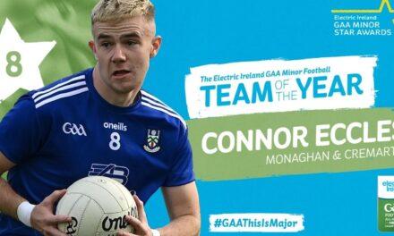 Electric Ireland Honours Major Minors